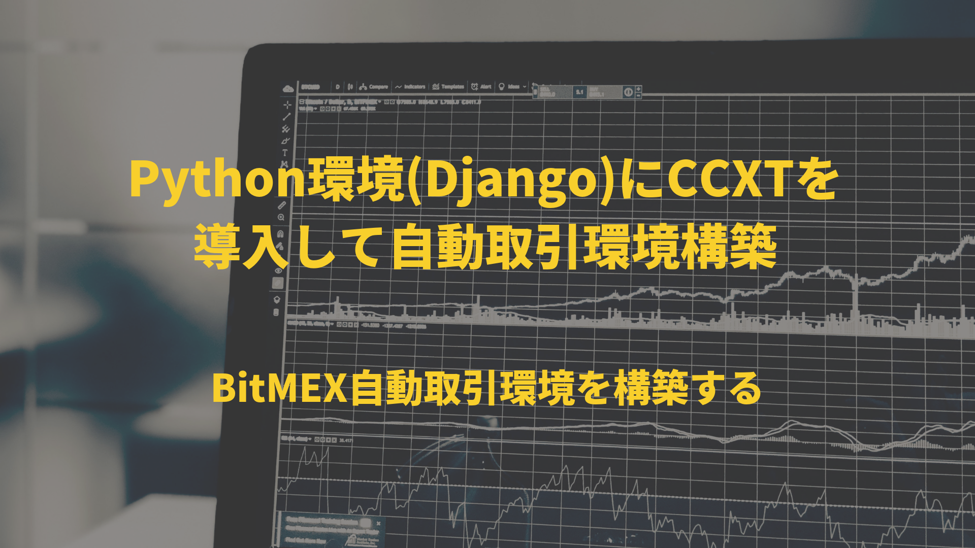 Bitmex Python Api